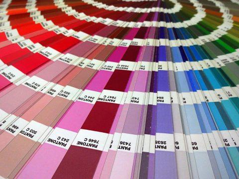 Colori Con La P.Colori Con La P Quali Sono Eccoli In Breve